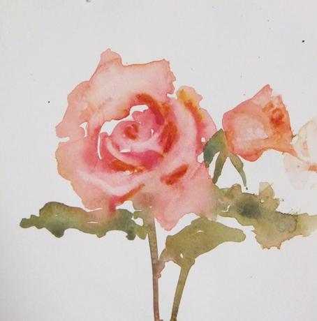loose rose